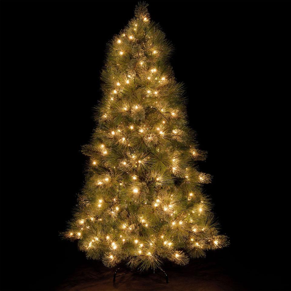 6ft Pre-Lit Appalachian Pine Tree