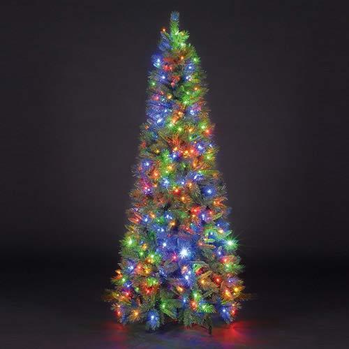 7ft Duchess Spruce Luxury Slim Pre-Lit Christmas Tree