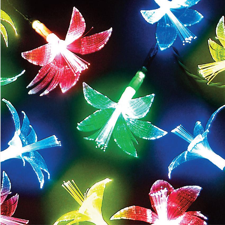 20 Fibre Optic Flower Multi-Colour LED Lights