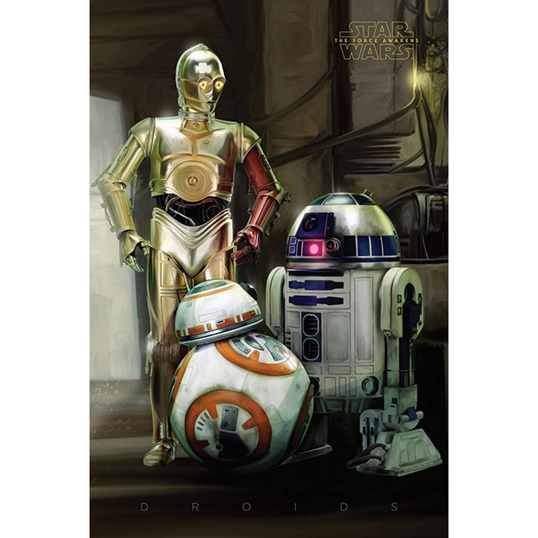 Star Wars Droids Maxi Poster