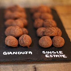 Chocolate Tasting Adventure with Hotel Chocolat